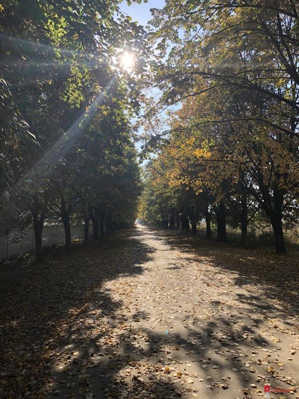 ЖК Одесский бульвар: Октябрь 2018