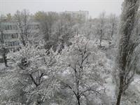 Непогода в Харькове: последствия неожиданной стихии