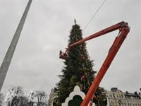 Елку на Софийской площади демонтируют