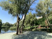 Вдоль проспекта Шухевича обустраивают парк