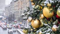 В ожидании праздников: стало известно, какой будет в этом году главная новогодняя елка страны