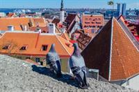 Как изменились цены на жилье в Европе за 10 лет