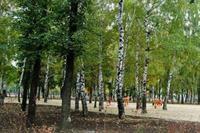 В Индустриальном районе отремонтируют парк