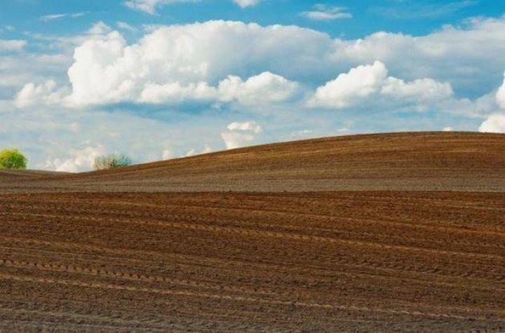 Стоимость земли в Украине вырастет в 5 раз
